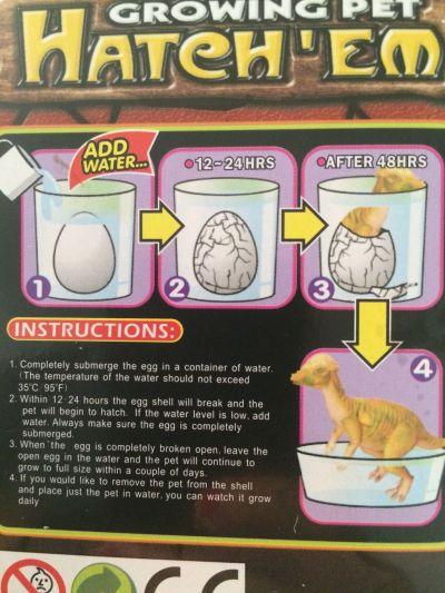 Instrucciones huevo de dinosaurio