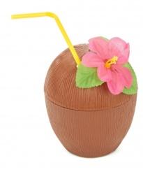 coco-hawaiano vegaoo.es