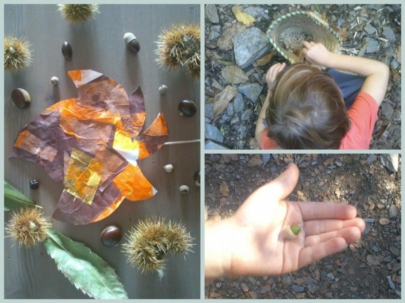 Actividades para niños / Otoño